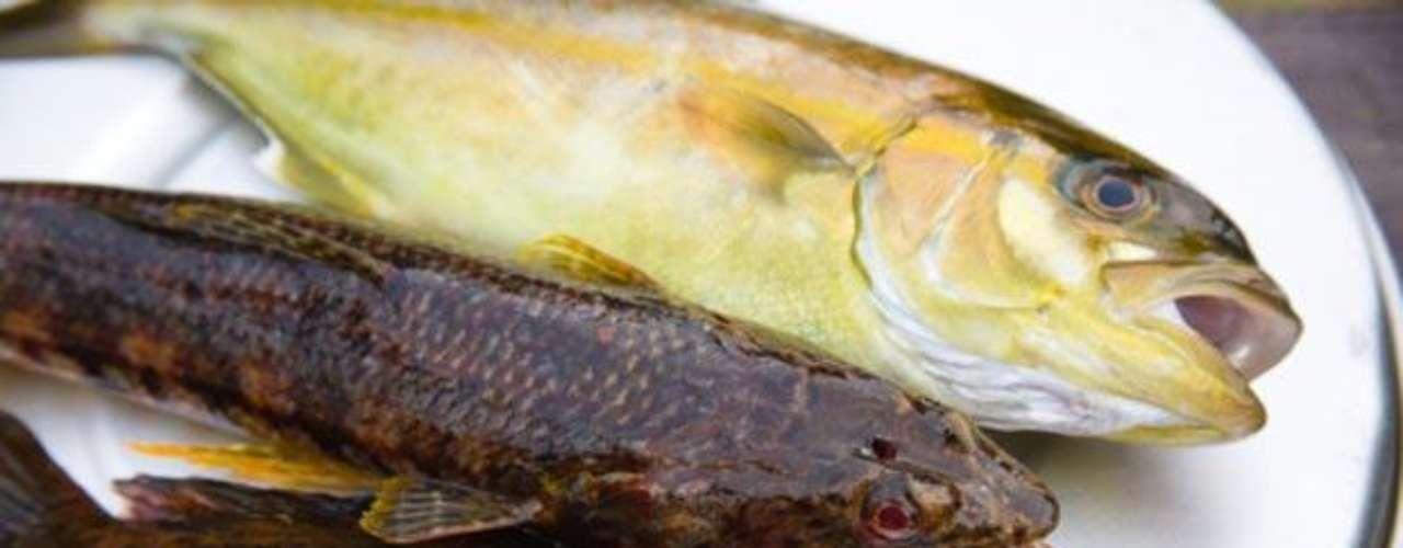 El pescado. Este alimento es muy saludable y su aporte calórico es muy bajo. Evita la hinchazón abdominal y reduce el exceso de grasa en el cuerpo