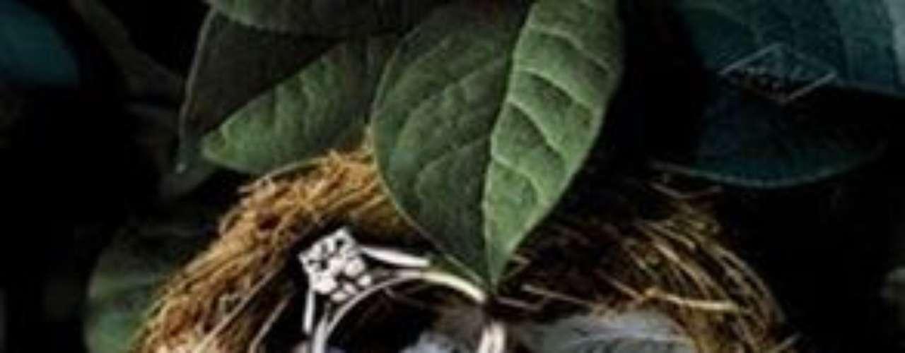 Van Cleef Arpels. Firma de joyas francesa, fundada en 1896 por Alfred Van Cleef y Charles Arpels. Abrieron su primera tienda en 1906 en París. Son reconocidos por su experiencia en piedras preciosas y han ganado la aclamación en particular para un innovador procedimiento de ajuste de la gema. En 2009, la compañía lanzó una línea de perfumes de lujo.