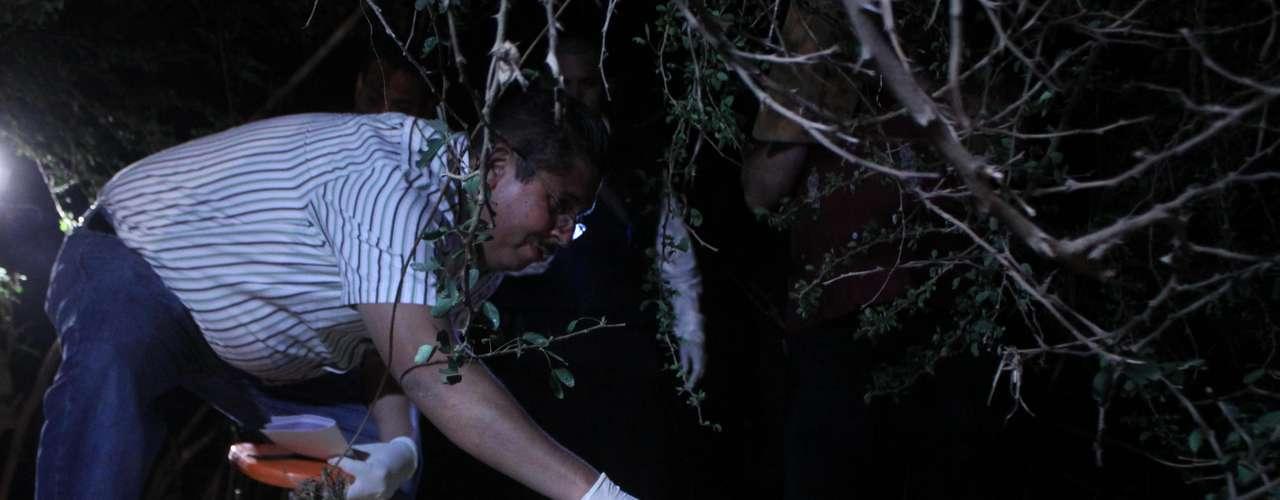 Marzo 1°: Peritos forenses inspeccionan el lugar donde el supuesto jefe de seguridad del capo Joaquín \
