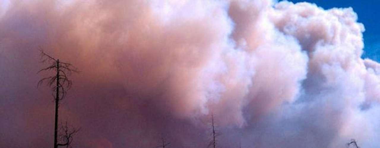 Las llamas han destruido decenas de cabañas y ocho dependencias, dijo la encargada de prensa de los bomberos, Iris Estes.