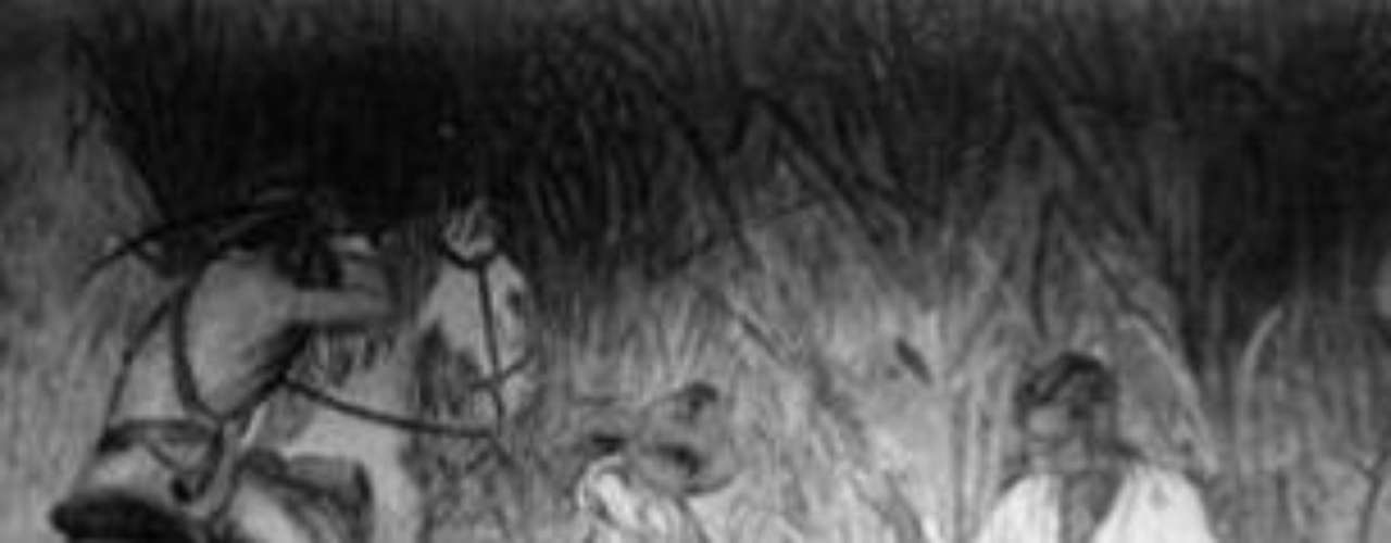 Indígenas de México, carreteras, la Ciudad Universitaria desde que se colocó la primera piedra, personajes e la cultura y el arte como Diego Rivera, Frida Kahlo, David Alfaro Siqueiros, el Doctor Atl, y una lista interminable más, además de políticos, deportistas y gente de a pie, ciudadanos como él mismo.