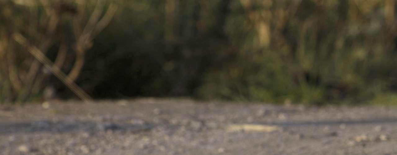 Al menos 14 cuerpos desmembrados fueron encontrados este 07 de junio en el interior de un camión de carga que fue abandonado frente a la alcaldía de El Mante, municipio del estado mexicano de Tamaulipas, informó una fuente oficial. Dado que el vehículo fue abandonado en una zona transitada por personas y vehículos, las autoridades decidieron trasladar a otro lugar los restos para contar el número de los cadáveres. Entre las víctimas, once hombres y tres mujeres, fue hallada una manta que presuntamente dejó el grupo criminal que se atribuyó la masacre, cuyo contenido se desconoce.