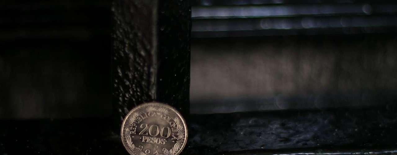 Moneda de 200: su grabado en el anverso es la Guacamaya Bandera posada sobre una rama con unas líneas horizontales en la parte inferior izquierda que se van dispersando hacia la parte derecha de esa cara.