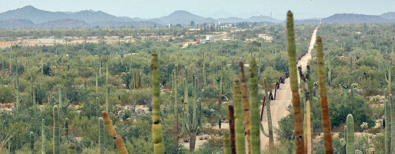 El Universal puso de manifiesto que en el 2011, el Cartel de Sinaloa, dominó las rutas del trasiego de droga en Sonora, México, además de la reservación india de Tohono O odgam y el puerto de Nogales.