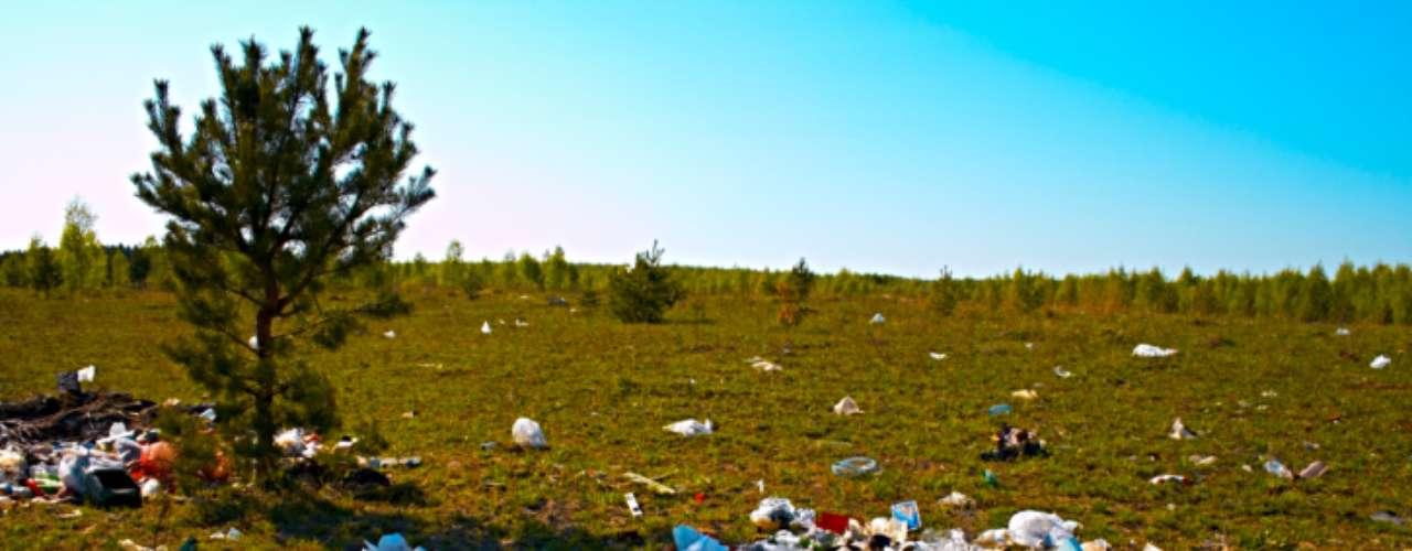 La basura es un gran problema de la humanidad. Según el Banco Mundial, sólo en 2012 se generarán 1,3 billones de toneladas de desechos. Se calcula que para 2025, esa cifra se duplicará.