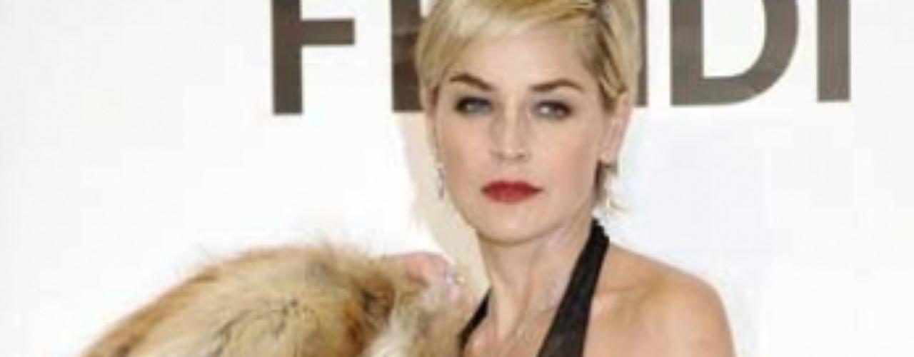 PETA ja dicho que quiere examinar el cerebro de Sharon Stone La organización defensora de derechos de los animales PETA, quiere descubrir por qué el gusto de Sharon por vestirse con pieles de animales, por lo que han ofrecido pagarle por examinar su cerebro