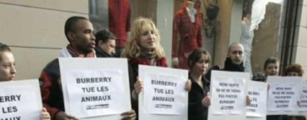 Tanto Burberry como Dolce & Gabbana han tenido su repudio por parte de activistas de PETA. Un grupo de activistas de PETA se plantó ante la tienda de Burberry, en la vía Condotti de la capital italiana. Por otro lado Dolce & Gabbana tuvo lo suyo. Cinco mujeres semi desnudas, dentro de ataudes y portando unos tétricos ramos de flores escenificaban su muerte, la misma muerte (pero de animales) de la que acusan a D&G.