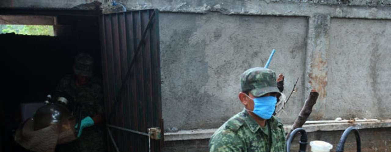 Al interior de los Caballeros, Gómez supervisa un consejo de 12 responsables de áreas como producción de droga, tráfico y redes de espionaje, según reportes militares.