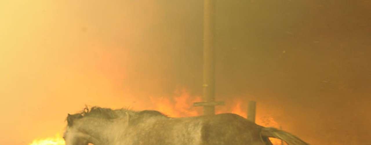 Otra conflagración forestal destruyó al menos 25 estructuras, incluidas algunas viviendas, luego de empezar cerca de Noble, unos 48 kilómetros (30 millas) al sur de Oklahoma City.