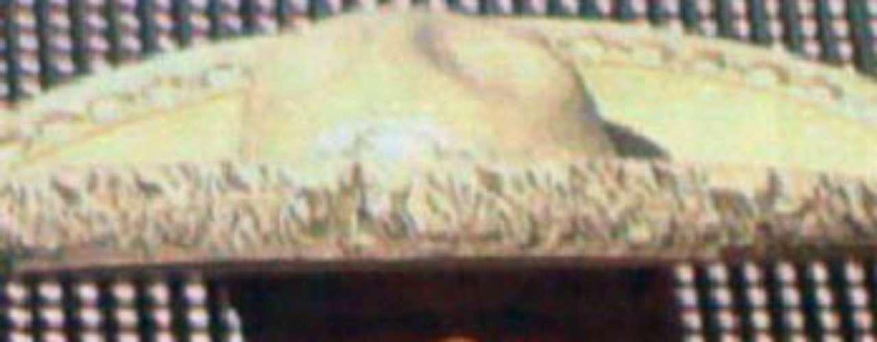 Pedro Fernández, quien por años le ha cantado las tradicionales mañanitas a la Virgen en la Basílica de Guadalupe en México, tuvo la responsabilidad de poner el toque musical a la fiesta en Estados Unidos.