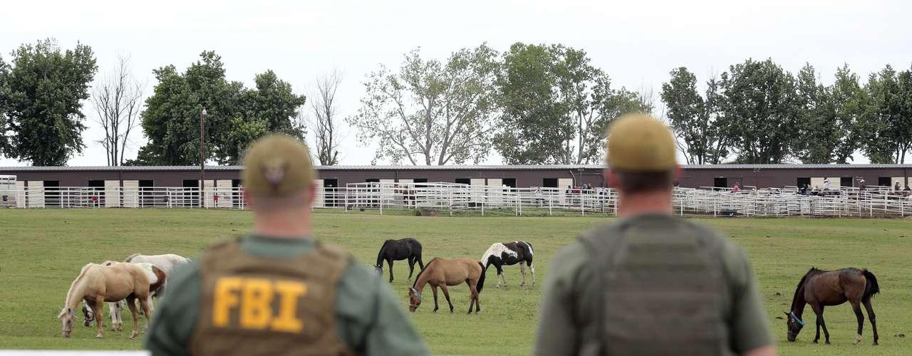 El juez federal de distrito Sam Sparks le permitió la semana pasada a los fiscales subastar a los caballos y conservar el dinero de la venta hasta que el caso sea resuelto.