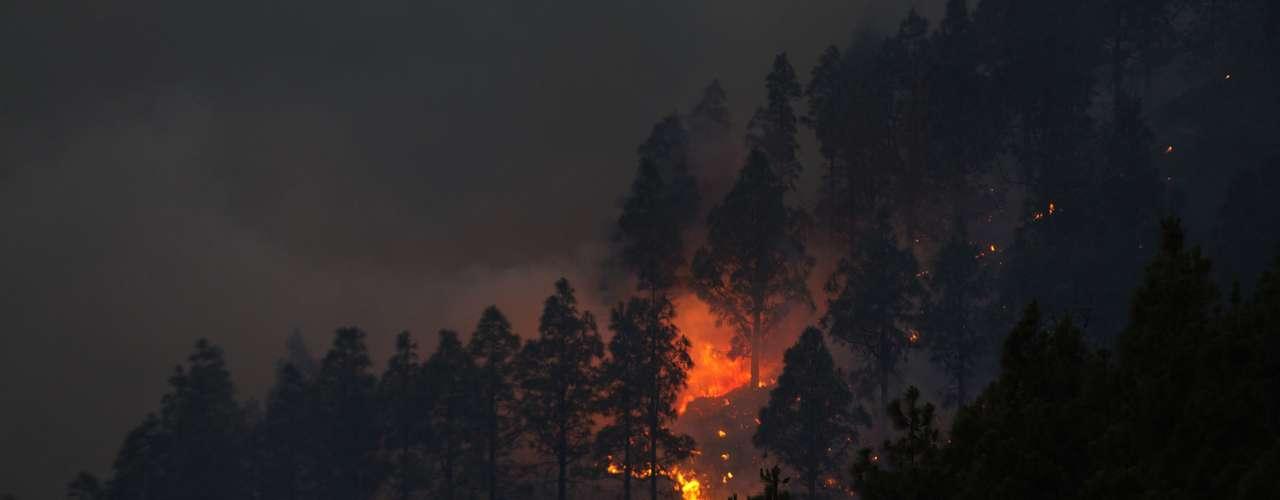 El fuego que se declaró el pasado jueves en la zona del Alto Sil, en la provincia de León, (noroeste) ya ha sido controlado.