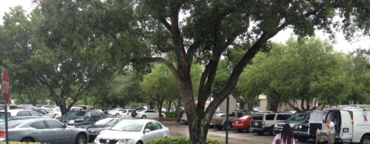 A última hora los habitantes de Florida hacen sus comprar para poder soportar la llegada de la tormenta tropical Isaac