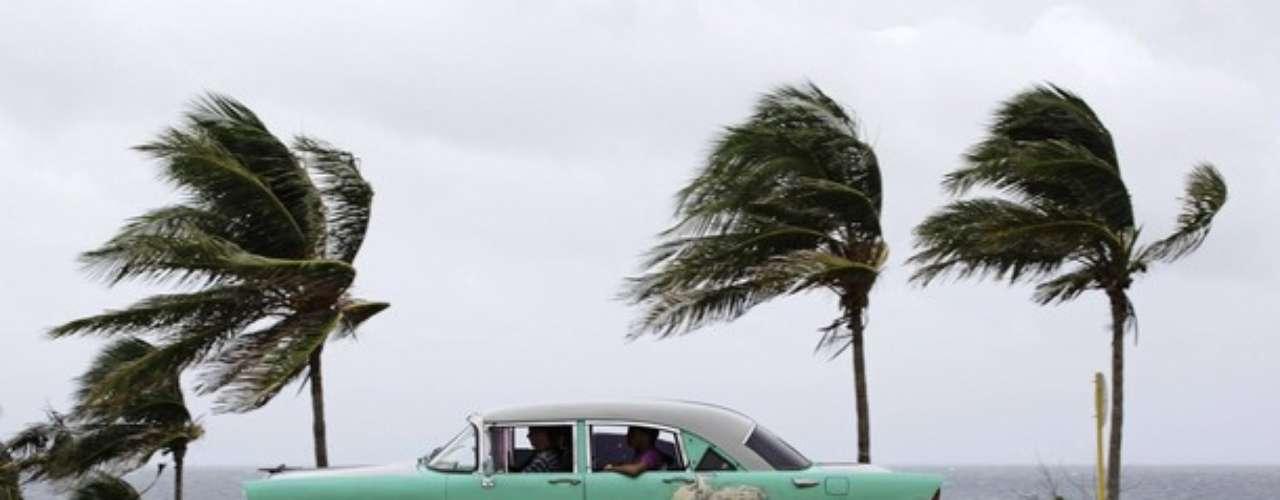 Las palmeras en la Habana eras testigos principales de los fuertes vientos causados por Isaac