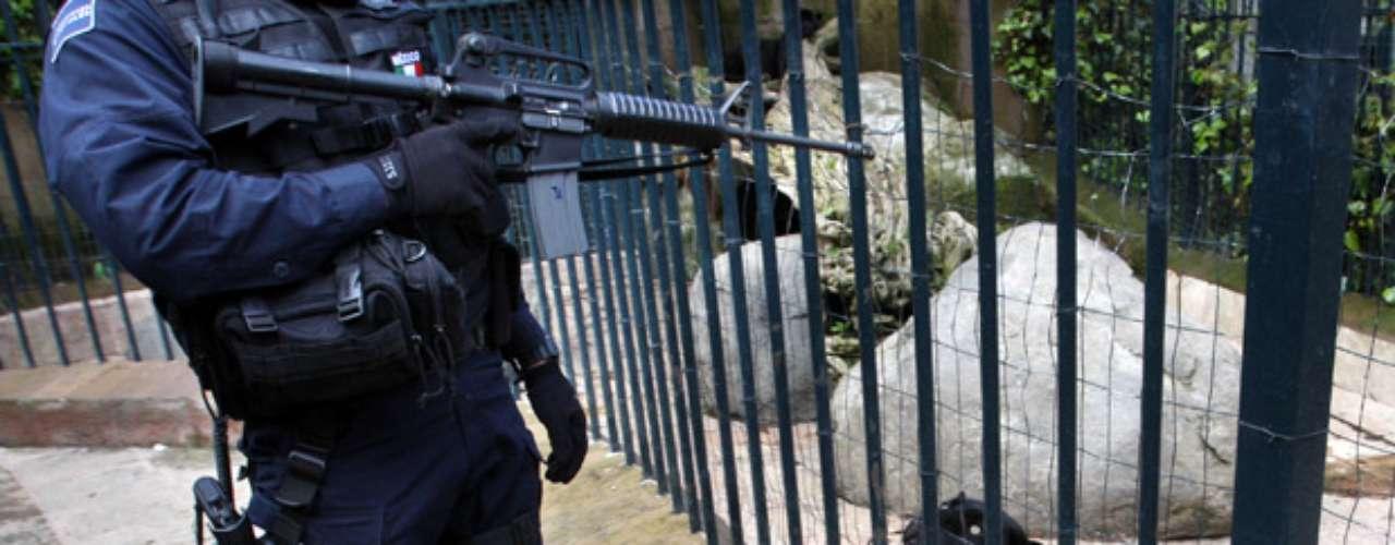 La ostentación del narco llega al reino animal con el embargo de un zoológico privado en el 2008 a un grupo de narcotraficantes en la Ciudad de México.