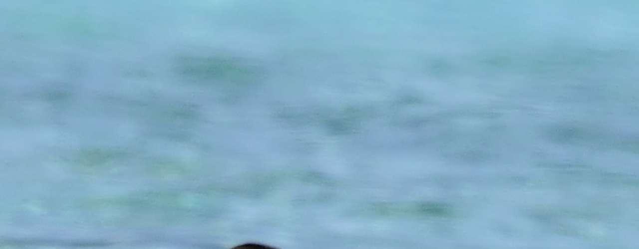 Gemma Mengual, 'cazada' también por algún avezado paparazzi en topless durante unas recientes vacaciones en Formentera.