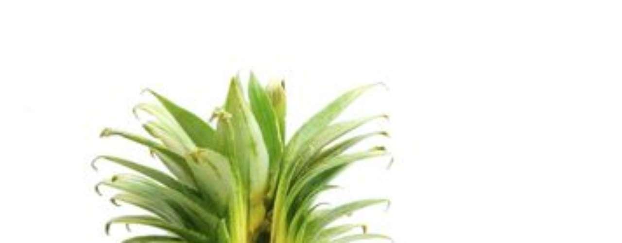 Fruta para el estreñimiento: Si eres una de esas personas que tiene complicaciones para evacuar, tu padecimiento podría resolverse con el incremento en la ingesta de frutas ricas en fibra  como: las frutas del bosque (grosellas, frambuesas y moras), ciruelas, naranjas, kiwi, manzana y piña. Lo mejor es comerlas en su estado sólido y no en jugos.