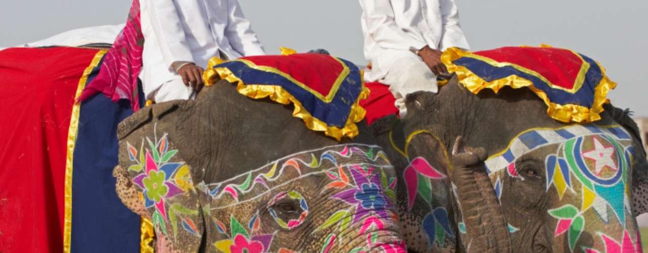 10 - Elefantes obesos a dieta. Nosotros no somos los únicos preocupados por perder peso. Unos elefantes en India están a dieta. Según expertos, los elefantes están con sobrepeso por los alimentos que consumen y por el poco ejercicio que hacen. (Fuente textos: BBC MUNDO)