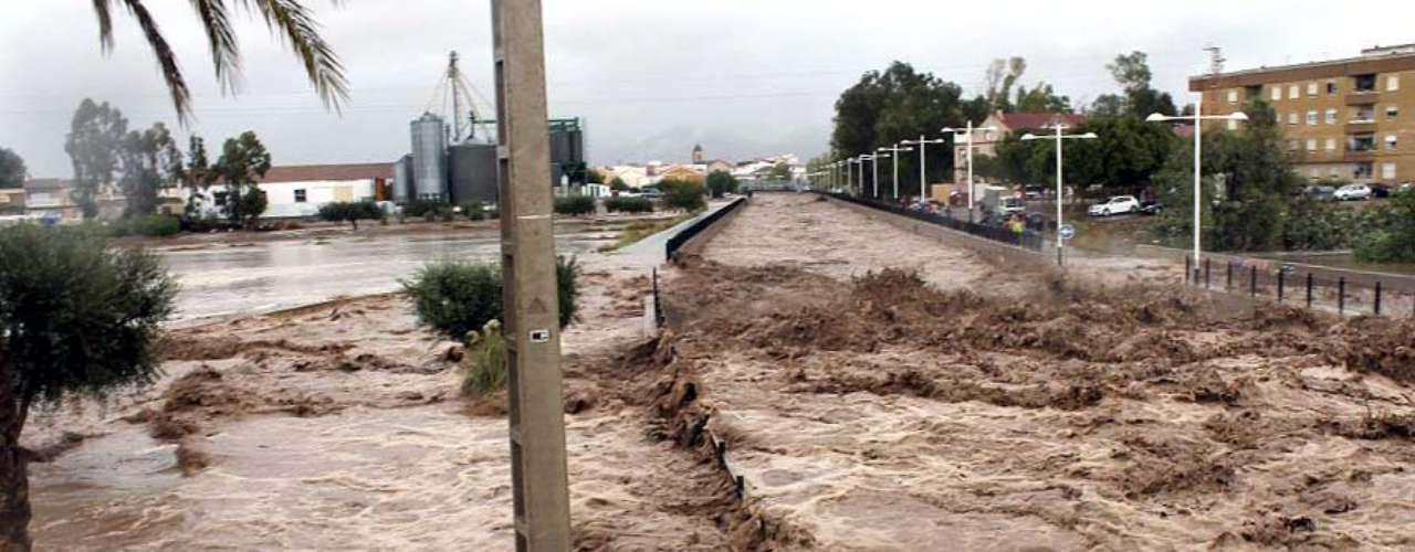 Las intensas lluvias han provocado la pérdida de miles de hectáreas de cultivos y la muerte de cientos de animales, así como numerosos daños en infraestructuras de comunicación del sureste peninsular.