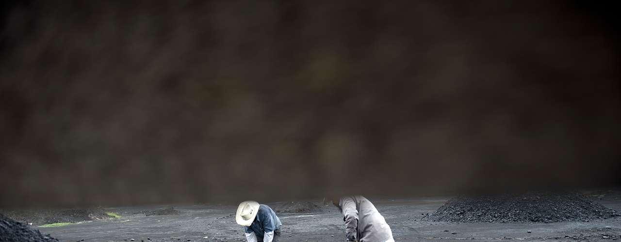 Los mineros afirman que ellos corren un doble riesgo; morir por un accidente o ser víctima de Los Zetas.
