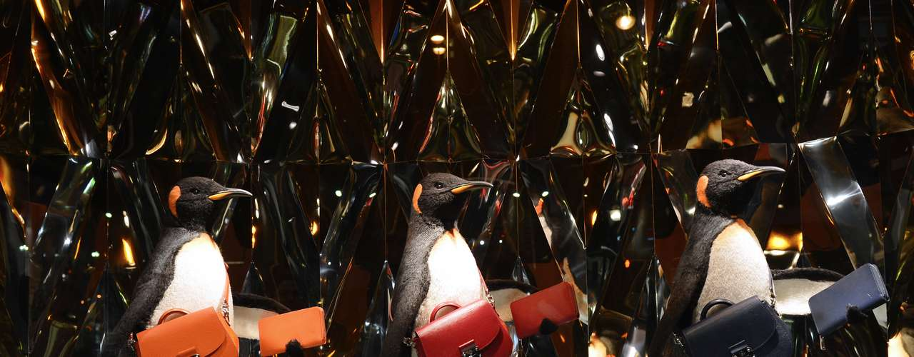 Pinguinos con bolsas lujosas en la vidriera de L