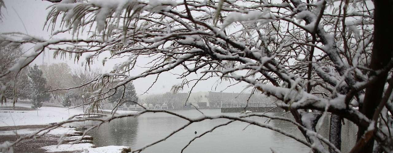 El actual frente frío ha afectado especialmente a los estados de Chihuahua, Durango, Coahuila y Nuevo León, en el norte del país.