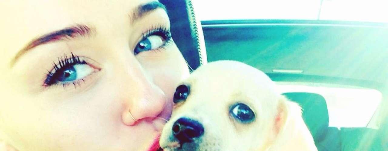 El nuevo perrito de Miley Cyrus está simplemente ¡para comérselo!