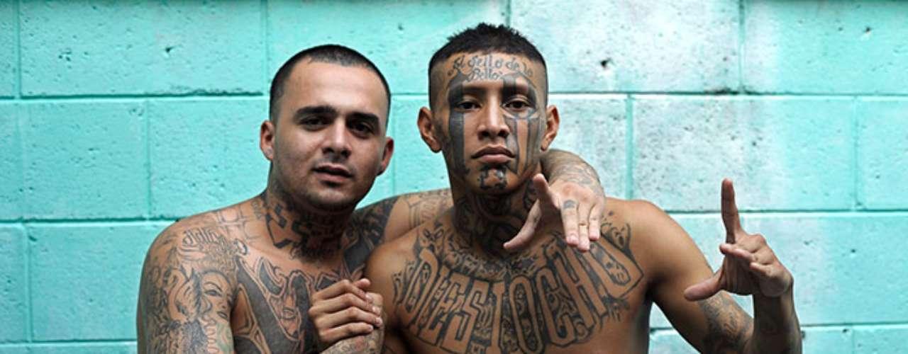 Cerca del 49% de los pandilleros son de origen hispano/latino, 34% son afro-americanos, 10% son blancos no-latinos y 6% son asiáticos. El problema ha empeorado tanto que el gobierno considera que las pandillas son una de las amenazas más serias a la seguridad interna, después del terrorismo.