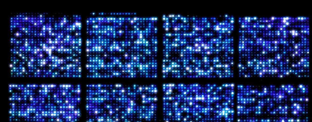 Afecta los genes de descendencia. Los efectos del estrés sobre los genes de una persona pueden ser transmitidas de generación en generación. El estudio de New Scientist reportó que las células de ratones antes de nacer mantenían ciertas marcas de estrés de generaciones anteriores provocadas por factores externos.