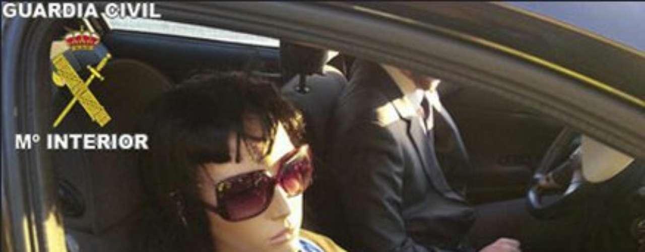 ¿Amas la compañía? Aquí un copiloto siempre presente aunque no con los sentidos alerta. ¿Qué te parece?