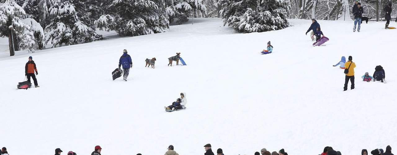 People gather to toboggan and walk their dogs in Central Park in New York, February 9, 2013. A blizzard pummelled the Northeastern United States, killing at least one person, leaving hundreds of thousands without power and disrupting thousands of flights, media and officials said.   REUTERS/Carlo Allegri  (UNITED STATES - Tags: ENVIRONMENT ANIMALS)
