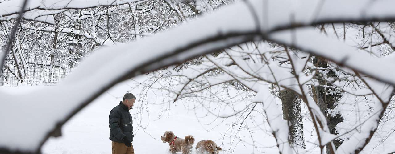 A man and his dogs walk though a snowy Central Park in New York February 9, 2013. A blizzard packing hurricane-force winds pummeled the northeastern United States on Saturday, killing at least one person, leaving about 600,000 customers without power and disrupting thousands of flights. REUTERS/Carlo Allegri  (UNITED STATES - Tags: ENVIRONMENT ANIMALS)
