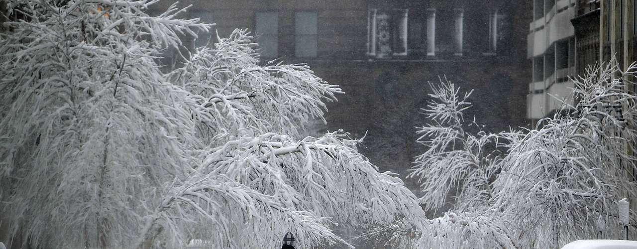 El Sistema Nacional del Clima (NWS) de Estados Unidos informó que la tormenta dejó a lo largo del lunes acumulaciones de nieve de 1.80 metros en Amarillo, y el resto del noroeste de Texas conocido como \
