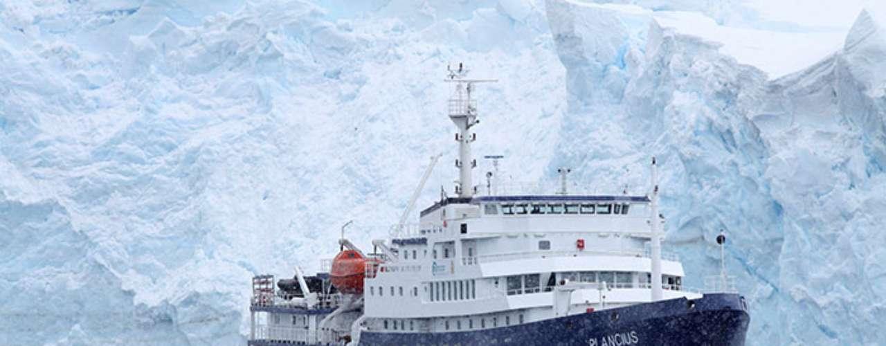Dicha desaparición parcial de los hielos del provocaría la disminución del krill, base del régimen alimenticio de los pingüinos.