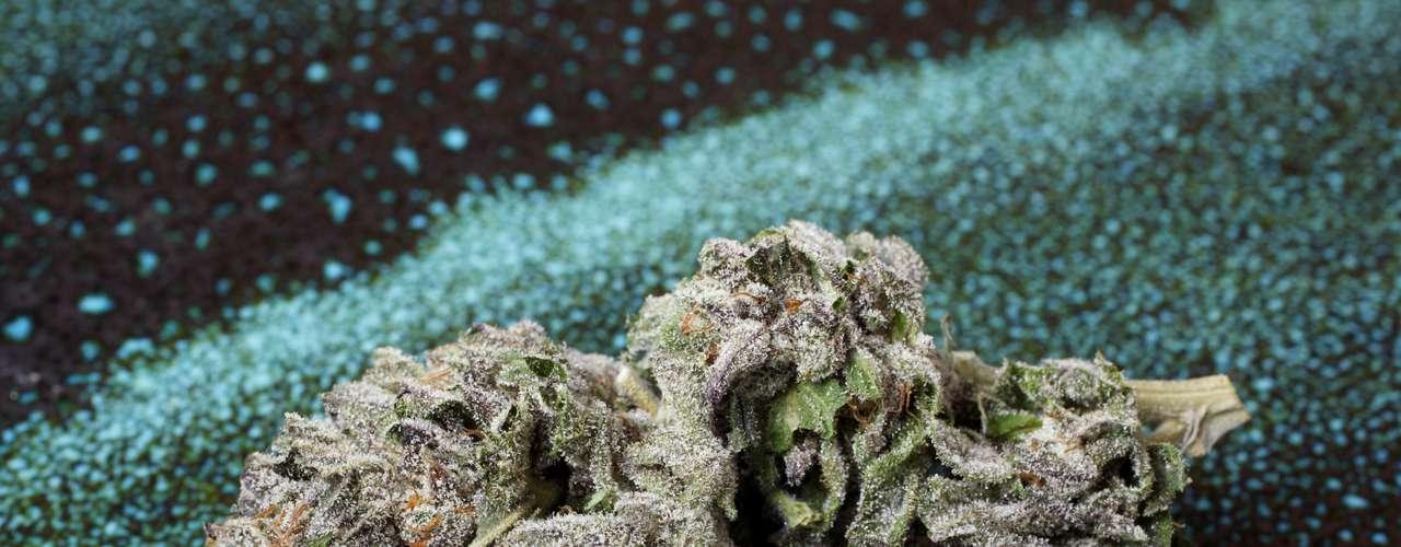 Los primeros registros del uso medicinal de la marihuana se remontan al año 2737 A.C. en China, y se ha utilizado como remedio terapéutico en culturas como la india con los tibetanos, los celtas y los egipcios, así como en África del Sur y Sudamérica, que la usaron siglos atrás con efectos terapéuticos y místicos.