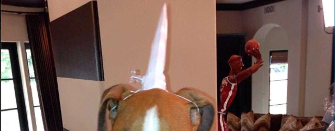 Kim Kardashian viste a su perro con un unicornio: \