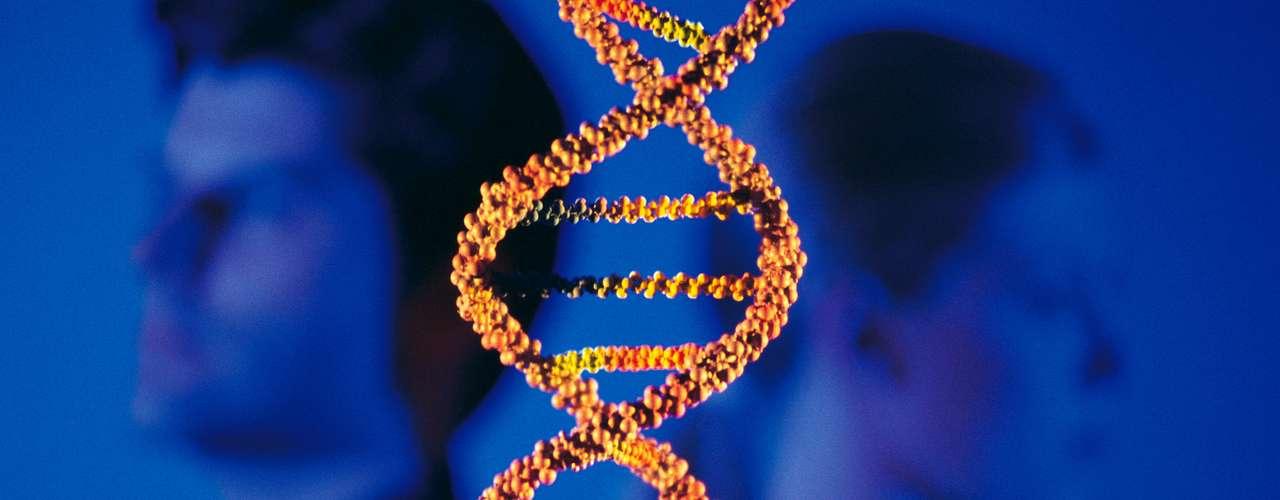Los genes parecen ser importantes, si usted tiene un familiar. con trastorno bipolar su probabilidad de desarrollarlo es mayor.