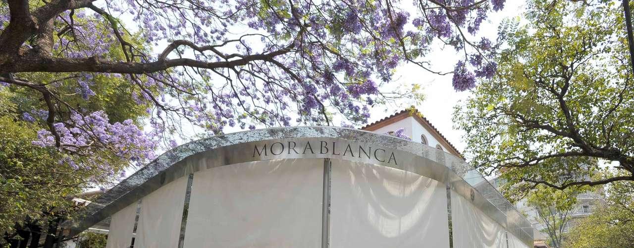 En el corazón de Polanco existe uan nueva opción para los amantes de la gastronomía. Se trata del restaurante Morablanca, propiedad del exitoso chef Daniel Ovadía.