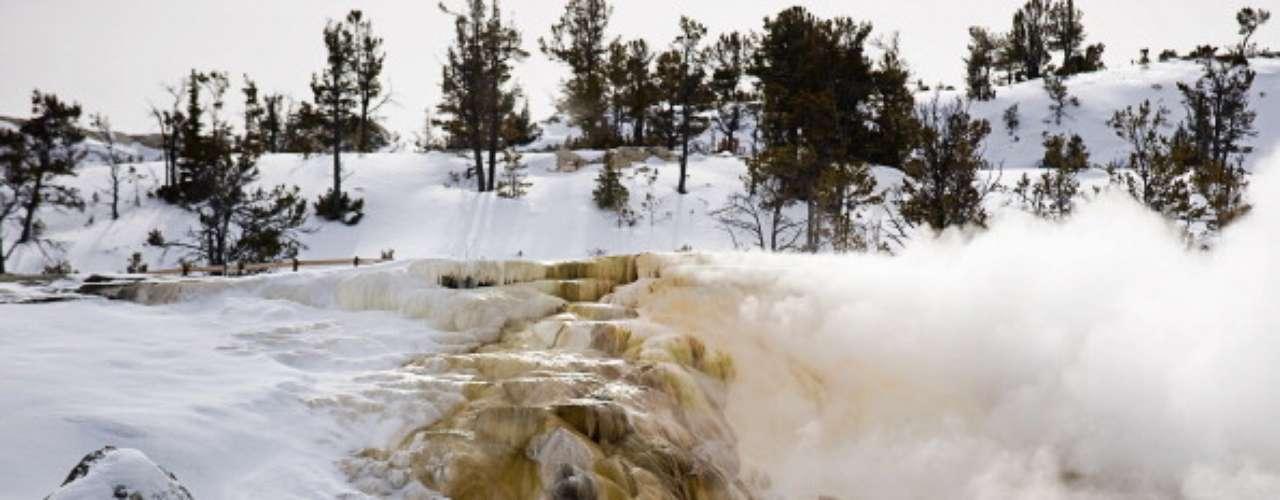 La mayoría de los visitantes eligen conducir por todo el parque y acampar en el camino. Para obtener más información, visite el sitio web de turismo Wyoming.