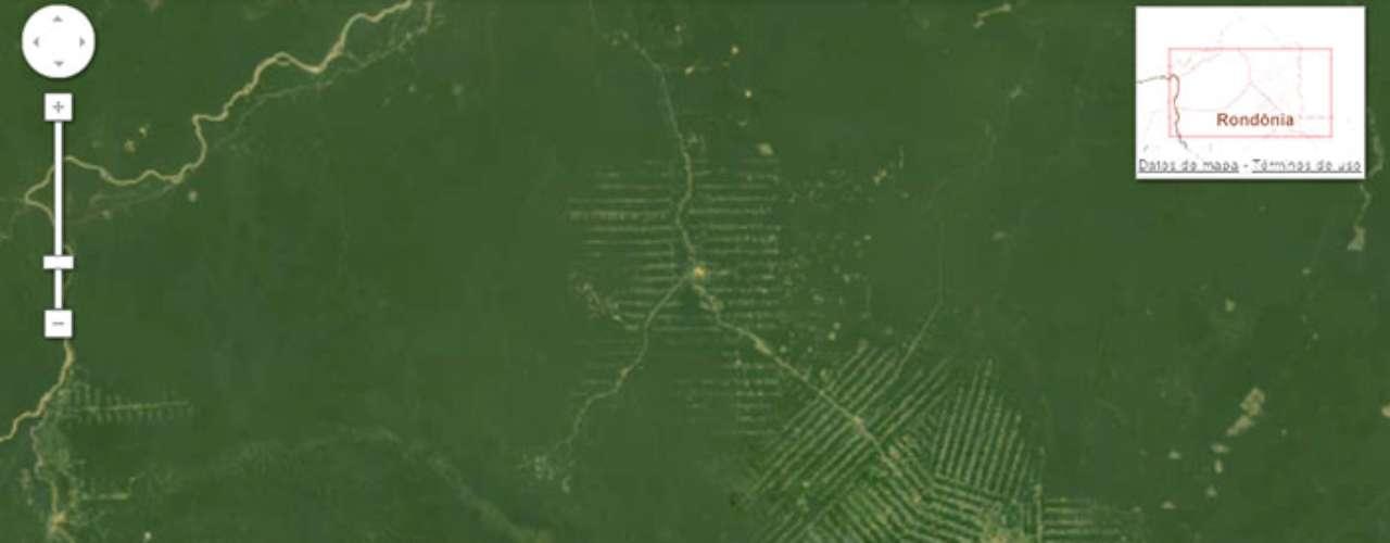 La deforestación del Amazonas en Brasil.