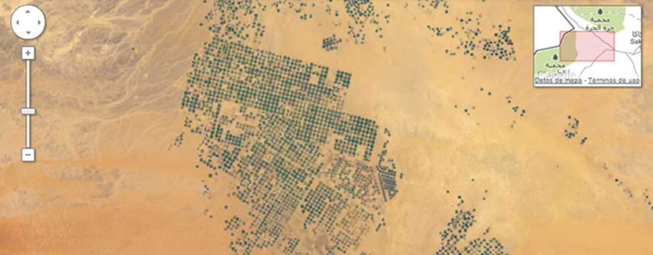 El desierto de Arabia Saudita se convierte en círculos de cosechas que brotan en todo el terreno gracias a la buena irrigación.