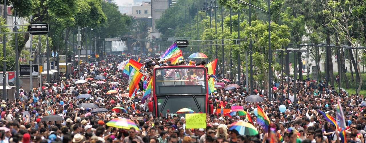 Luis Flores Perea, coordinador general de la edición 35 de la Marcha Lésbico, Gay, Transgénero y Transexual, informó que esperan que asistan entre 25 mil y 30 mil personas al evento, pero el Jefe de Gobierno del DF, Miguel Ángel Mancera, dijo que la cifra superó los 50 mil personas.