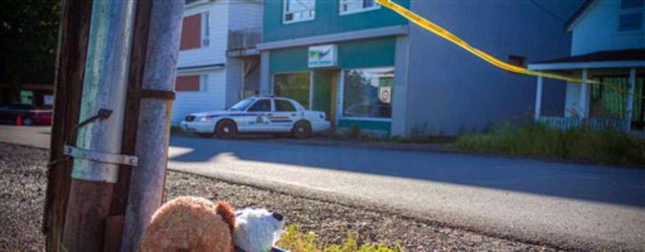 El más reciente caso dos niños murieron estrangulados por una enorme serpiente pitón africana que era mantenida de forma permanente en el apartamento del propietario de una tienda de mascotas, en New Brunswick, en el este de Canadá.