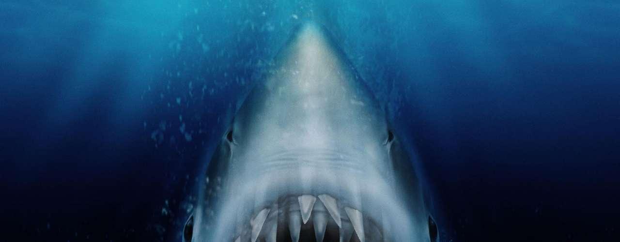 'Jaws': La paz de Amity Island se ve perturbada con la aparición de un voraz tiburón que siembra el terror. El sheriff, un biólogo y un viejo marinero tratarán de cazar a la bestia. Sábado 5 de octubre a las 8 de la noche, por Moviecity Classics.