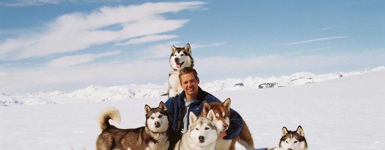 'Eight Below'. En 2006 colaboró con Disney Pictures para esta película sobre un grupo de perros rescatistas al mando de Jerry Shepard, interpretado por Walker. El actor tuvo que aprender a convivir con perros en la Antártida.