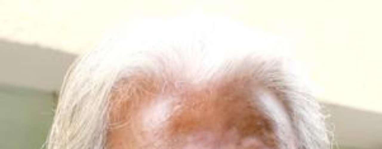 Don Raul Araiza, el padre del también actor que lleva su mismo nombre, fue víctima de cáncer de próstata y falleció a los 78 años de edad.Actores que murieron en2011Actores hispanos quemurieron en 2012Estrellas hispanas que murieron en 2013Encuentra páginas de tus novelas favoritas en orden alfabético