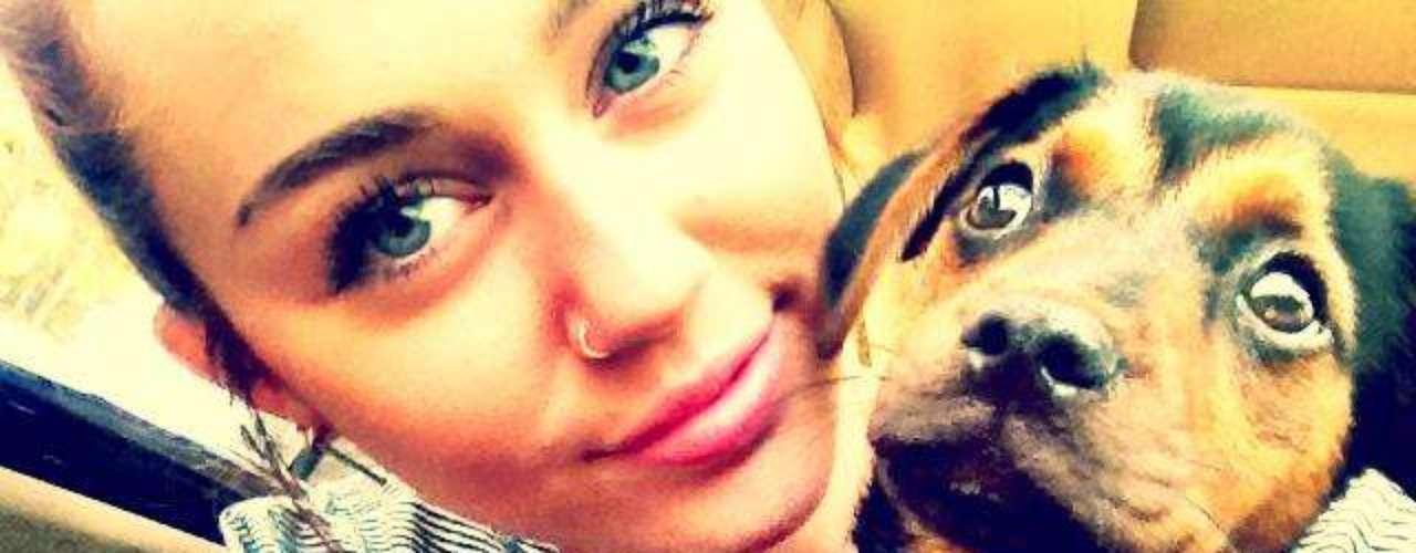 La cantante no se explica cómo puede haber personas que abandonen cachorros en la calle sin el menor remoordimiento.