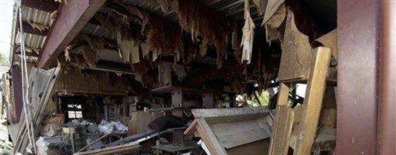 El aire también provocó lo peor. La tormenta tropical Debby que azotó a Florida este domingo,  provocó la formación de dos tornados en la zona central del estado, por el que murió una mujer. Los tornados destruyeron cuatro casas en la zona sur del condado. La mujer fue hallada sin vida en Venus, ubicado en el centro de Highland.