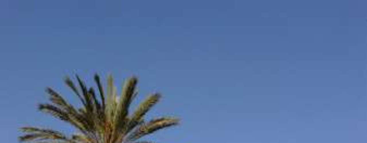 Por su parte Argelia se encuentra en plena construcción de su primer tren bala. Se trata de un proyecto de una línea de doble vía que unirá la estación de Oued Tlélat (Orán) y Akid-Abbès (Tlemcen), con una distancia de 270 kilómetros. Además, conectará con Argel, Buira y Beni Mansur.