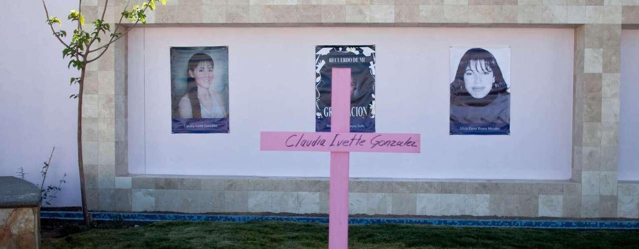 También subrayaron que fueron asesinadas 11 defensoras de derechos humanos entre diciembre de 2010 y el mismo mes de 2011, así como 13 mujeres periodistas de 2005 a 2012, mientras que más de 100 trabajadoras de los medios de comunicación denunciaron algún tipo de violencia en su labor. Hasta el día de hoy ninguno de estos casos ha sido resueltos.